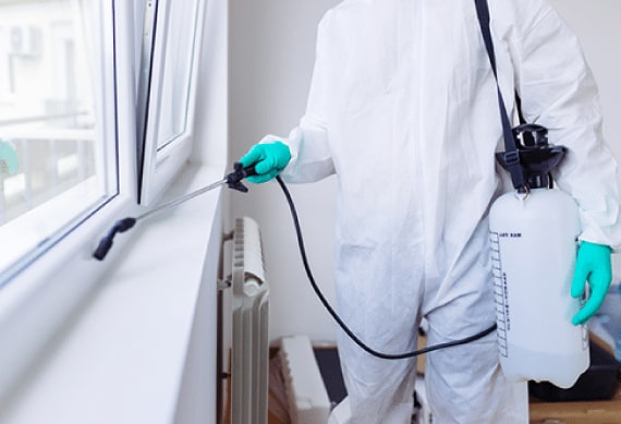 Pest Control Services 24x7Hrs In Melbourne